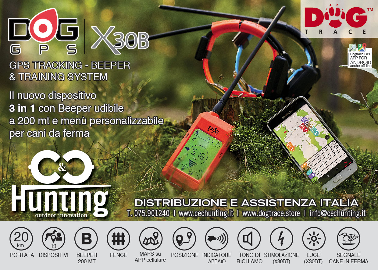 Volantino Dogt Trace X30T